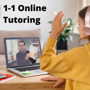 1-1 Online Tutoring